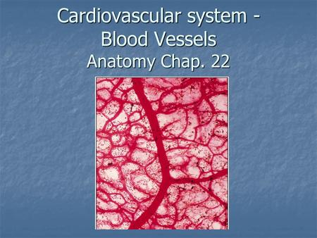 Cardiovascular system - Blood Vessels Anatomy Chap. 22.