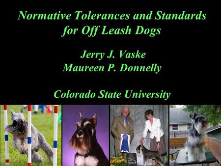 Normative Tolerances and Standards for Off Leash Dogs Jerry J. Vaske Maureen P. Donnelly Colorado State University.