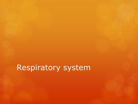 Respiratory system. The primary function of the respiratory system is the supply of oxygen to the blood and the removal of carbon dioxide.