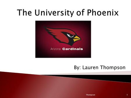By: Lauren Thompson Thompson1. [Arizona Cardinal 2013//Angry Birds Are Back] YouTube. Retrieved on 2/19/2014 from