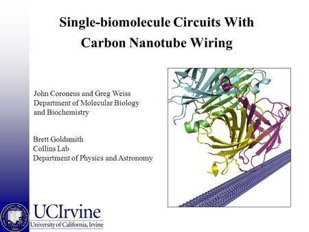 Single-biomolecule Circuits With Carbon Nanotube Wiring Brett Goldsmith Collins Lab Department of Physics and Astronomy John Coroneus and Greg Weiss Department.