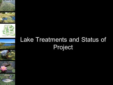 Lake Treatments and Status of Project. Treatments to be Implemented Four different treatments to stormwater basins within the Grand Haven community. –Aeration.