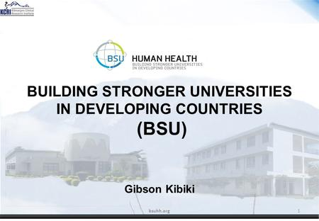 BUILDING STRONGER UNIVERSITIES IN DEVELOPING COUNTRIES (BSU) Gibson Kibiki bsuhh.org1.