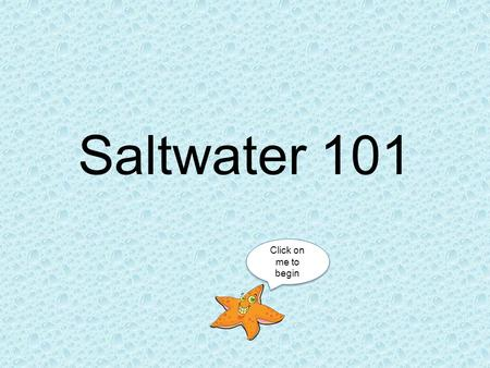 Saltwater 101 Click on me to begin Everything you need to know to start your saltwater adventure! Starter Fish Setting Up Your Tank Setting Up Your Tank.