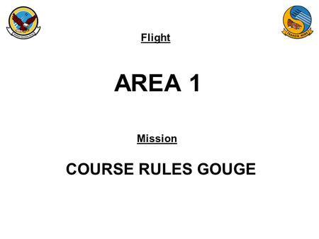 Flight Mission AREA 1 COURSE RULES GOUGE. FAM-08 AREA 1.