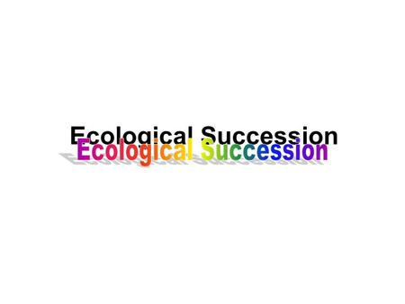 Ecological Succession. Both the biotic or living and the abiotic or non- living components of an ecosystem change over time. Will this landscape of rocks.