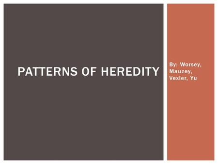 By: Worsey, Mauzey, Vexler, Yu PATTERNS OF HEREDITY.