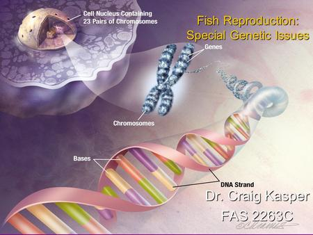 Fish Reproduction: Special Genetic Issues Dr. Craig Kasper FAS 2263C.