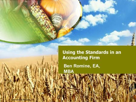 Using the Standards in an Accounting Firm Ben Romine, EA, MBA.