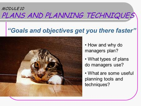 "MODULE 10 PLANS AND PLANNING TECHNIQUES ""Goals and objectives get you there faster"" How and why do managers plan? What types of plans do managers use?"