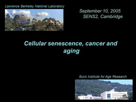 Cellular senescence, cancer and aging Buck Institute for Age Research Lawrence Berkeley National Laboratory September 10, 2005 SENS2, Cambridge.