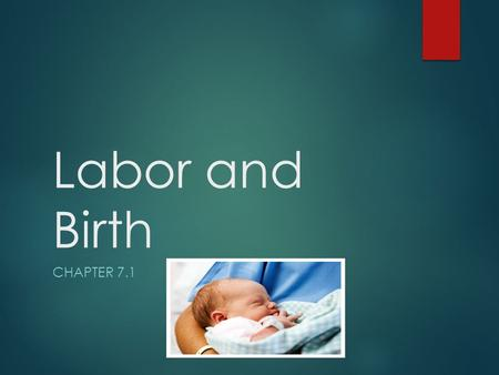 Labor and Birth CHAPTER 7.1. About Time  For 9 months, the unborn child has been developing in the womb. Now the baby is ready to make an exit. Prelabor.