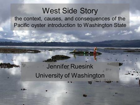 West Side Story the context, causes, and consequences of the Pacific oyster introduction to Washington State Jennifer Ruesink University of Washington.
