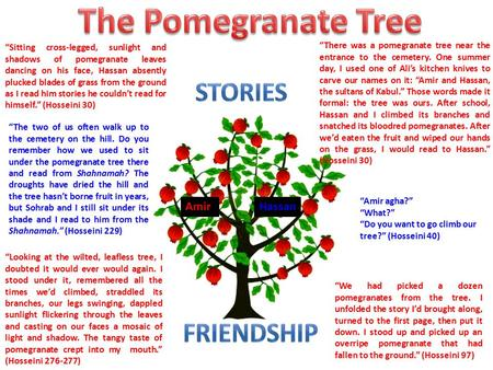 The Pomegranate Tree stories Friendship Amir Hassan