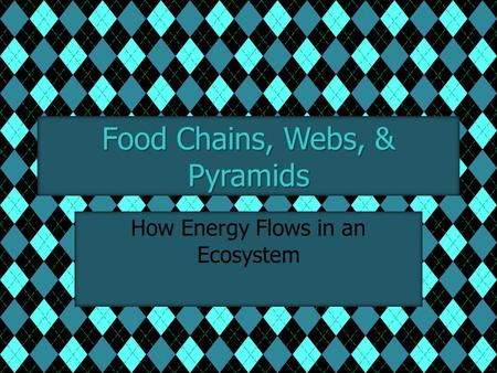 Food Chains, Webs, & Pyramids How Energy Flows in an Ecosystem.