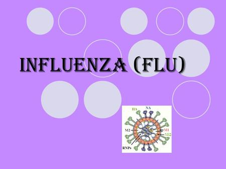 Influenza (flu). The flu The flu is a contagious infection of the nose, throat, and lungs caused by the influenza virus. Causes  In temperate climates,