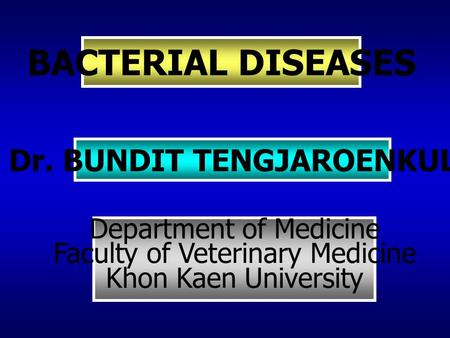 BACTERIAL DISEASES Dr. BUNDIT TENGJAROENKUL Department of Medicine Faculty of Veterinary Medicine Khon Kaen University.