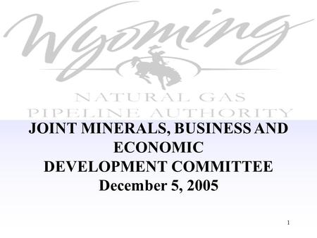 1 JOINT MINERALS, BUSINESS AND ECONOMIC DEVELOPMENT COMMITTEE December 5, 2005.