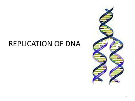 REPLICATION OF DNA.