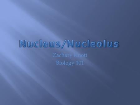 Zachary Knott Biology 101.  The nucleus is the cell's control center  It issues instructions to that control cell activities  It stores hereditary.