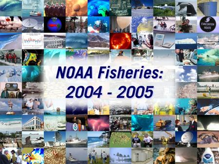 NOAA Fisheries: 2004 - 2005. Mission Stewardship of living marine resources through science-based conservation and management and the promotion of healthy.