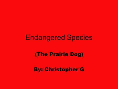 Endangered Species (The Prairie Dog) By: Christopher G.