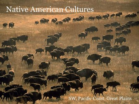 Native American Cultures SW, Pacific Coast, Great Plains.