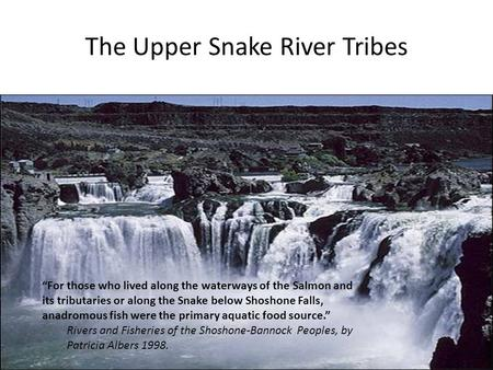 "The Upper Snake River Tribes ""For those who lived along the waterways of the Salmon and its tributaries or along the Snake below Shoshone Falls, anadromous."