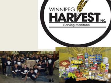 Winnipeg Harvest is a non-profit, community based organization that is a food distribution & training center. Our goals are to collect and share surplus.