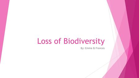 Loss of Biodiversity By: Emma & Frances. Biodiversity Biodiversity is the variety of life in the world or in a particular habitat or ecosystem.