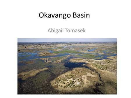 Okavango Basin Abigail Tomasek. Okavango Basin  Approximately 1600 km long Majority of basin undeveloped and one of.