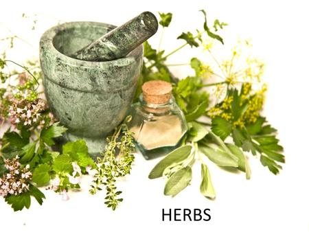 HERBS. What are herbs? In general use, herbs are any plants used for food, flavouring, medicine, or perfume.