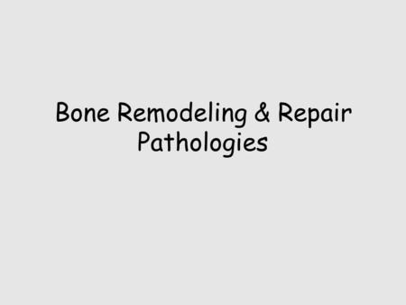 Bone Remodeling & Repair Pathologies. Skeletal system remodels itself to maintain homeostasis.