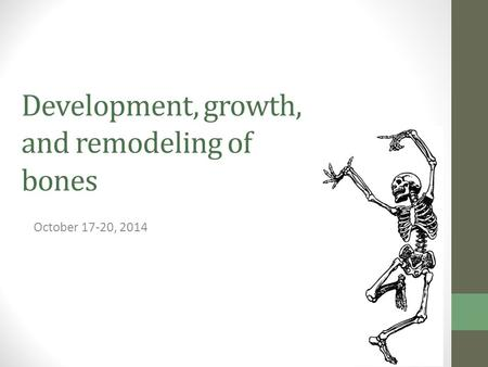 Development, growth, and remodeling of bones
