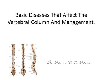 Basic Diseases That Affect The Vertebral Column And Management.