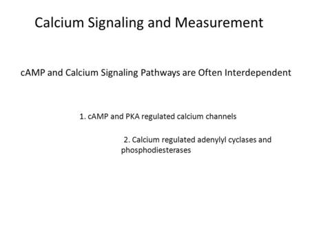 CAMP and Calcium Signaling Pathways are Often Interdependent 1. cAMP and PKA regulated calcium channels 2. Calcium regulated adenylyl cyclases and phosphodiesterases.