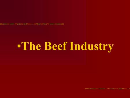 The Beef Industry. The average size beef herd is around 100 head.