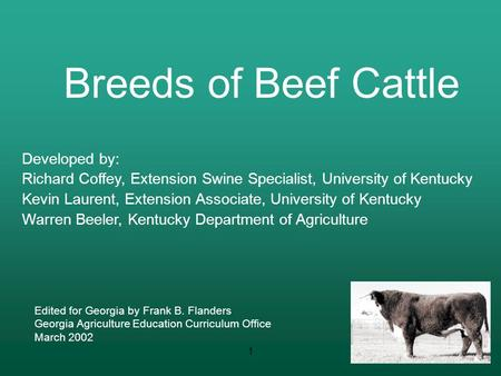 Breeds of Beef Cattle Developed by: