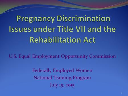 U.S. Equal Employment Opportunity Commission Federally Employed Women