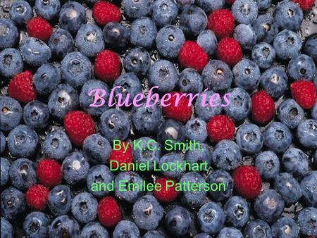 Blueberries By K.C. Smith, Daniel Lockhart and Emilee Patterson.
