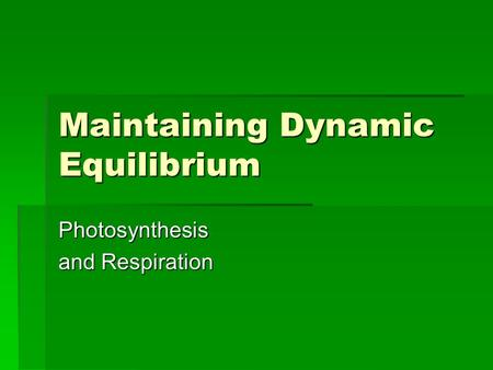 Maintaining Dynamic Equilibrium