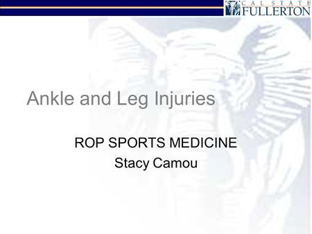 Ankle and Leg Injuries ROP SPORTS MEDICINE Stacy Camou.