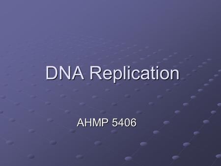 DNA Replication AHMP 5406.