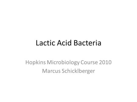 Lactic Acid Bacteria Hopkins Microbiology Course 2010 Marcus Schicklberger.