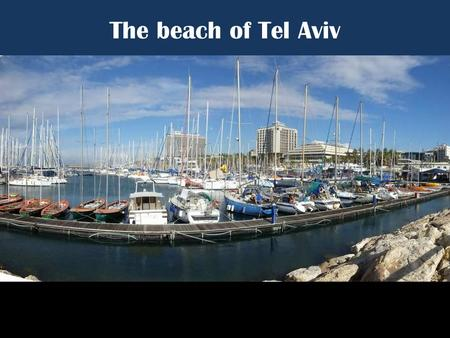 "The beach of Tel Aviv ""Call it Miami Beach on the Med. Tel Aviv is the Dionysian counterpart to religious Jerusalem… Some restaurants, discos, and."