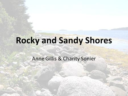 Rocky and Sandy Shores Anne Gillis & Charity Sonier.
