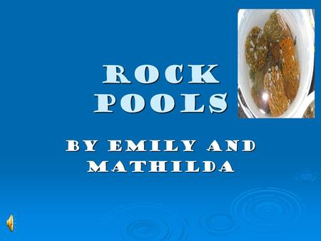 ROCK POOLS By Emily and Mathilda What is a rock pool?  Rock pools are places by the beach where there are rocks that have a hollow filled with sea water.