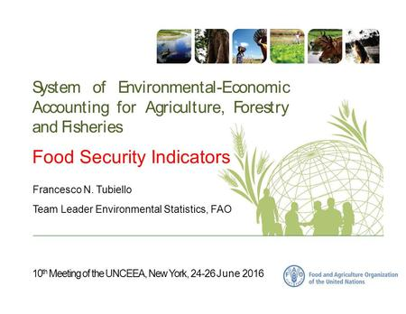 10 th Meeting of the UNCEEA, New York, 24-26 June 2016 System of Environmental-Economic Accounting for Agriculture, Forestry and Fisheries Food Security.