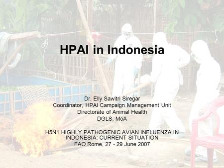 HPAI in Indonesia Dr. Elly Sawitri Siregar Coordinator, HPAI Campaign Management Unit Directorate of Animal Health DGLS, MoA H5N1 HIGHLY PATHOGENIC AVIAN.