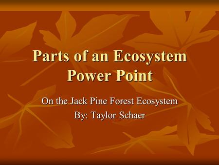 Parts of an Ecosystem Power Point